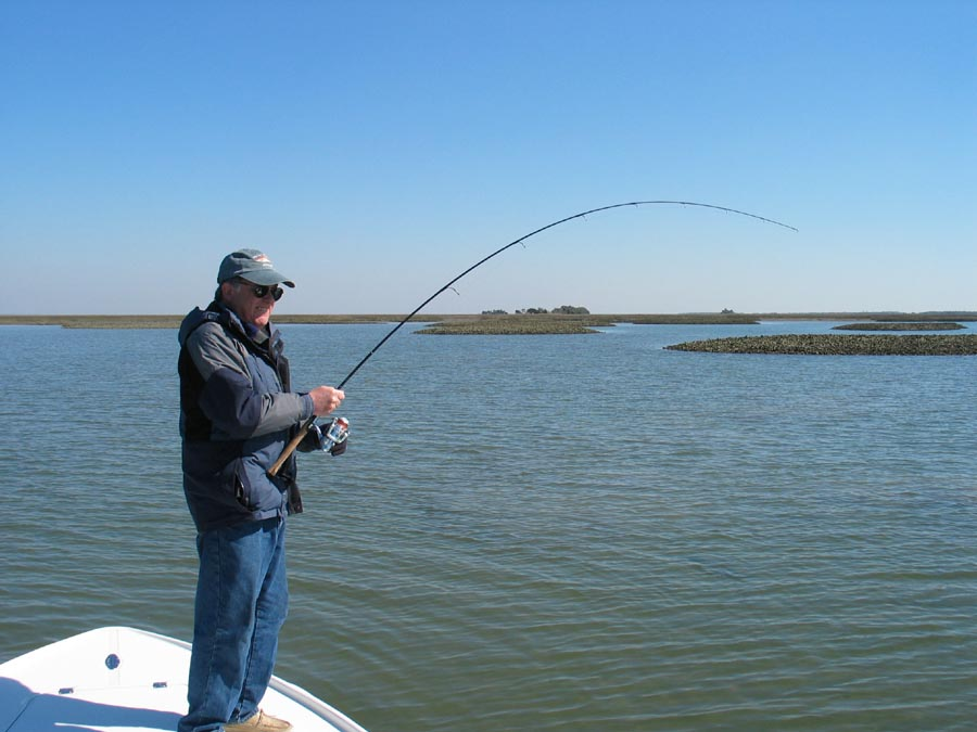 Current fishing report fish call charters charleston for Current fishing report