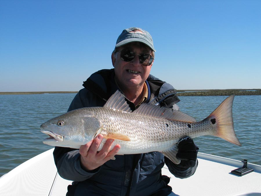 Current fishing report fish call charters charleston for Sc saltwater fishing report